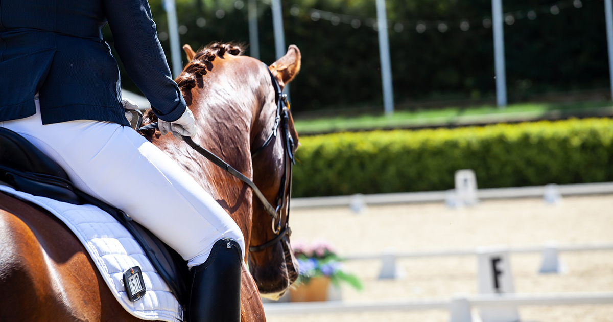 első know ló